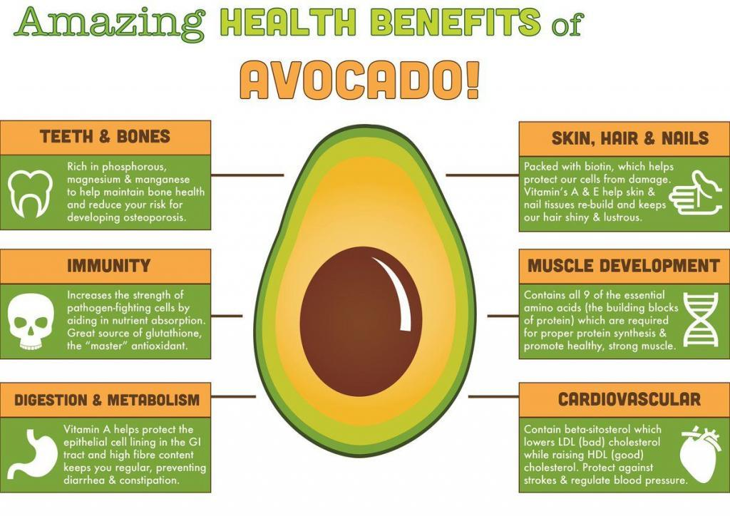 Avocado Benefits Health