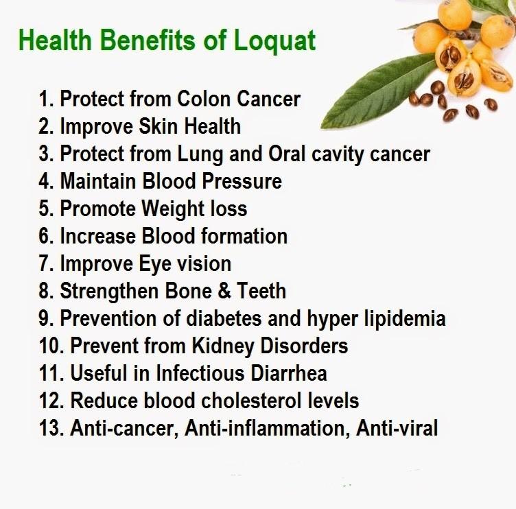Loquat Benefits