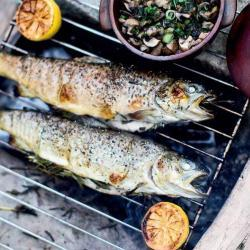 Healthy and Delicious Rainbow Trout Recipe