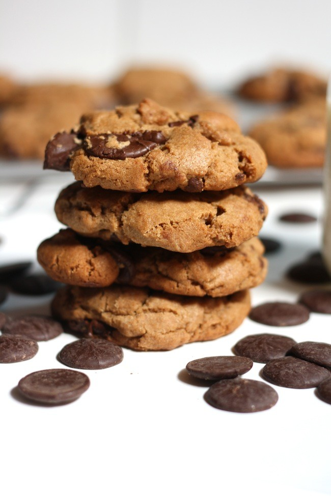 Double Chocolate Peanut Butter Cookies Recipe