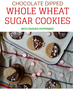 Chocolate Whole Wheat Sugar Cookies Recipe